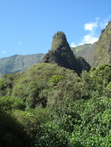 Iao Valley (3)