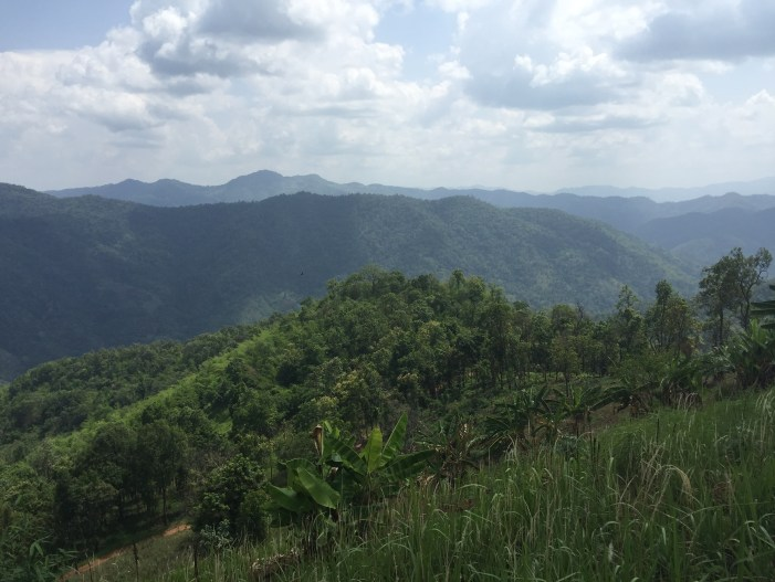 Hiking in Chiang Mai