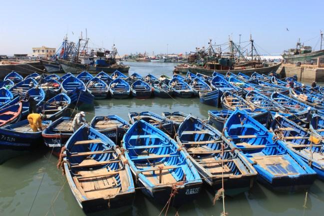 Blue boats in Essaouira
