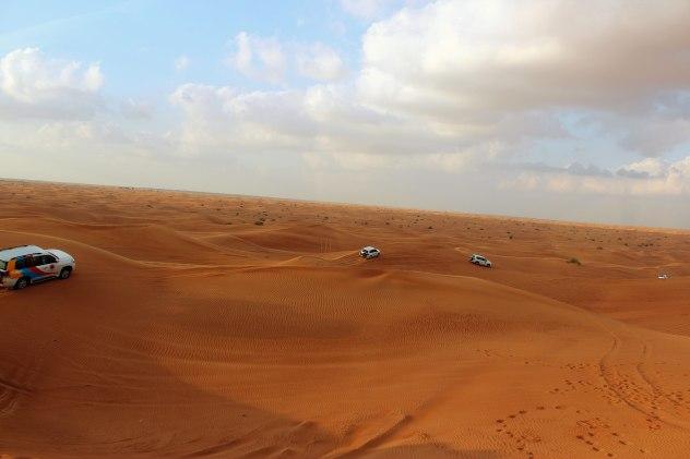 Desert-Safari-for-Web-2