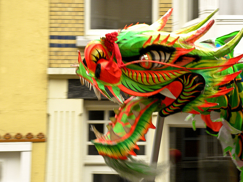 Chinese Dragon by Rool Paap