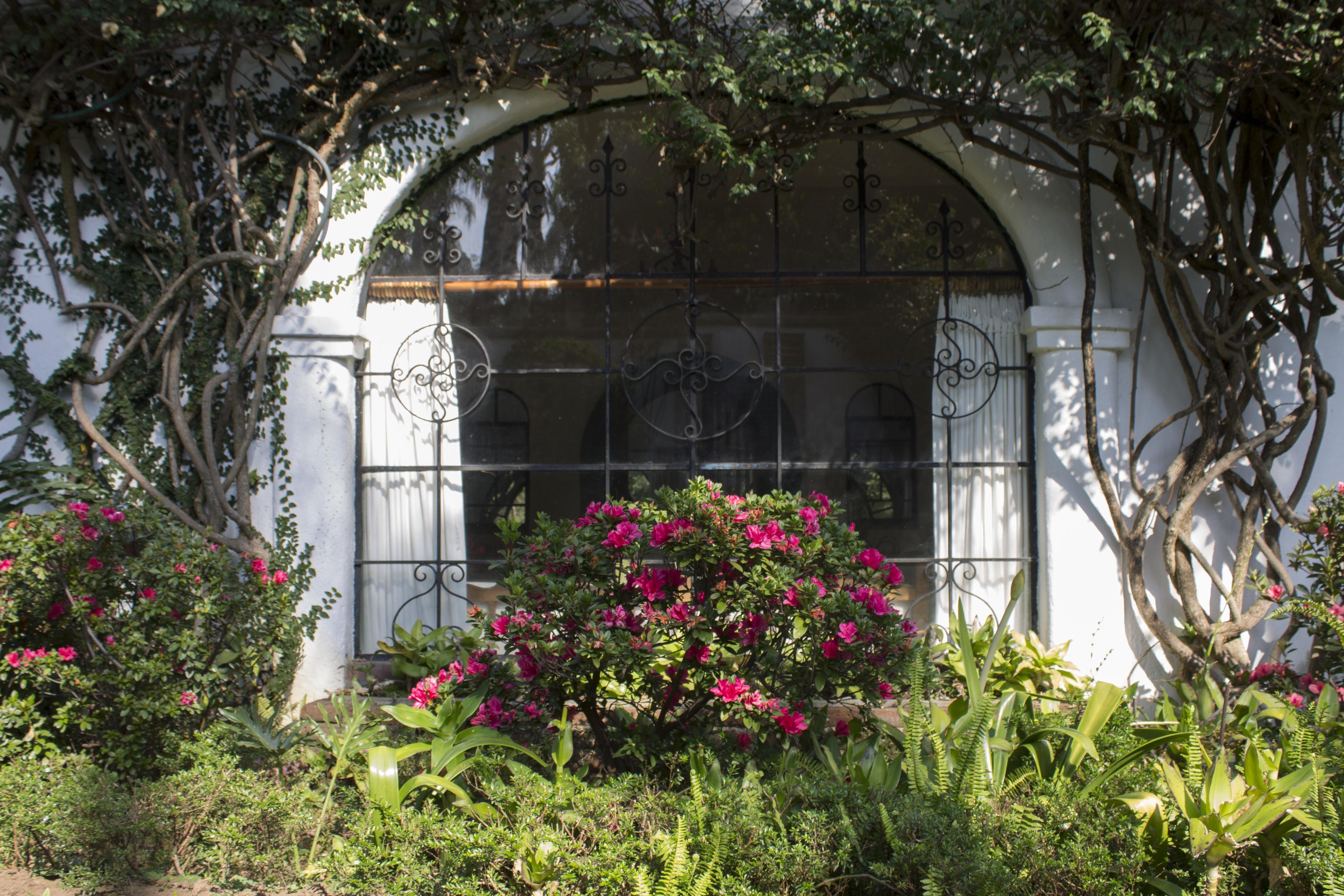 Gardens-Villas-Bellavista-Mexico-Home-Rental