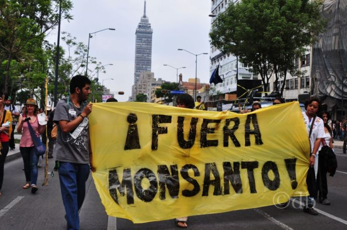 US Officials Joined With Agrochemical Giant Bayer to Stop Mexico's Glyphosate Ban