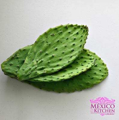 Nopales  mexican cactus recipe