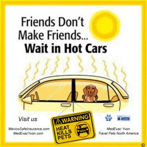 Pet hot car logo