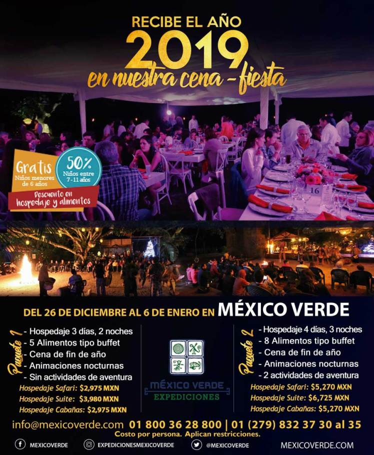 2019 año nuevo fiesta