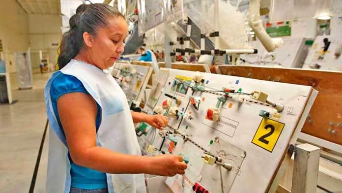 Gobierno de Sinaloa fortalece sectores primarios