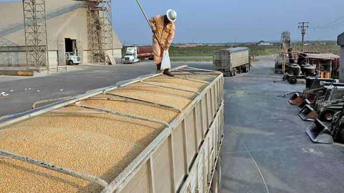 Agroindustria de Jalisco advierte riesgos en nuevo tratado