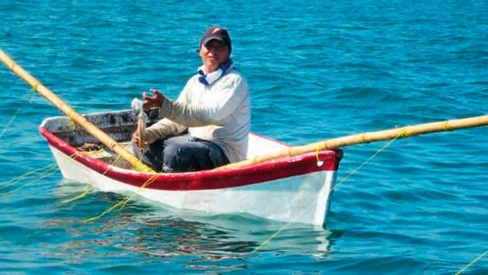Retornan pescadores con neveras semivacías; auguran mala temporada de pulpo