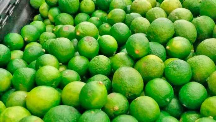 La baja producción de limón ayuda a que aumente su exportación