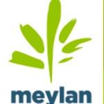 ville-meylan_logo