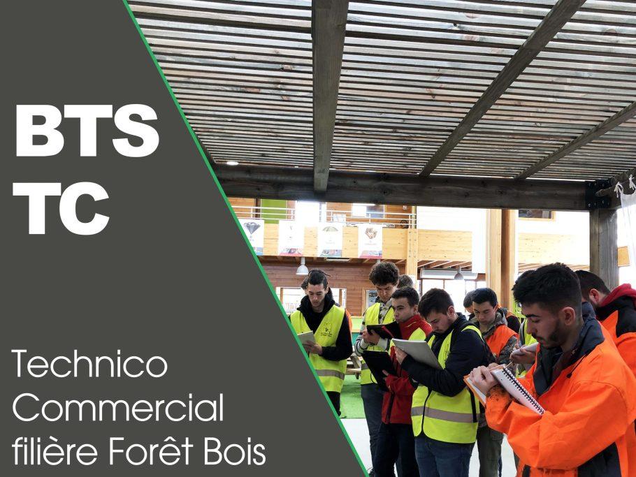 vignette formation BTS TC filiere foret bois meymac