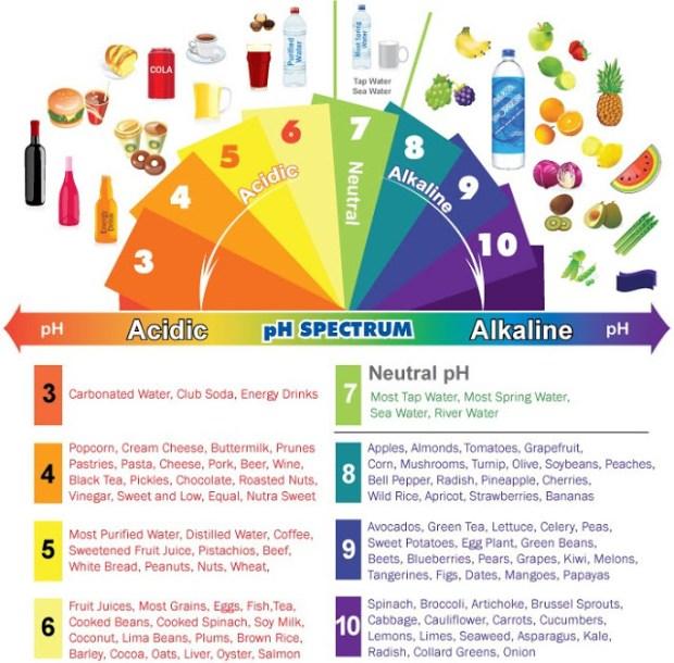 alkaline chart.jpg
