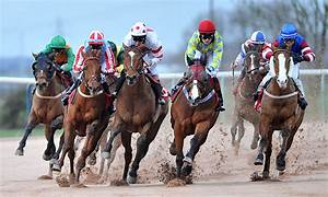 is horse racing really evil
