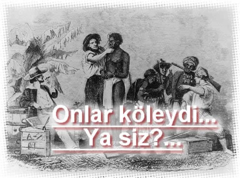 ÖZGÜRLÜĞÜN ÖZÜMSENMESİ VE SÖMÜRGECİLİK / SEYDO TURĞUT.
