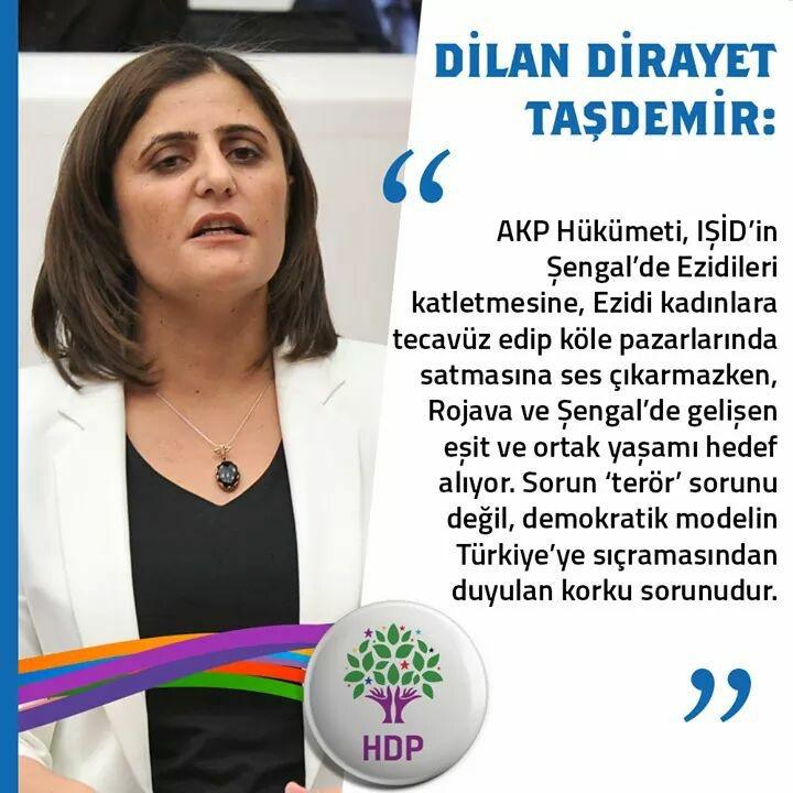 Dilan Dirayet Taşdemir: AKP Hükümeti Rojava ve Şengal'de gelişen eşit ve ortak yaşamı hedef almaktadır