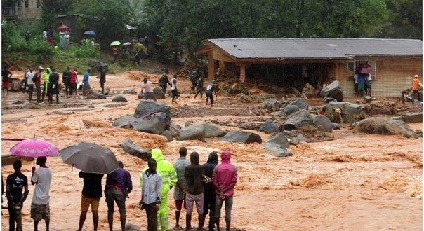 Campaña de conciencia y ayuda organizada por APPICA por la catástrofe de Sierra Leona