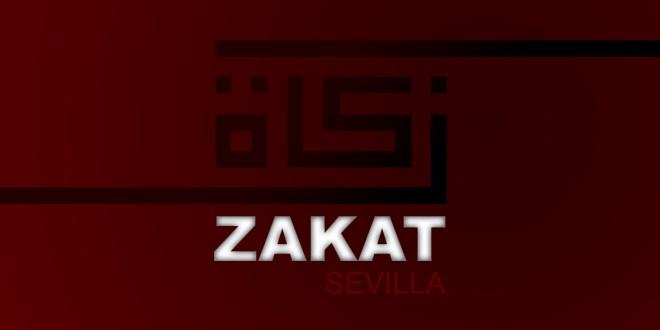 Zakat Seville 2019 report