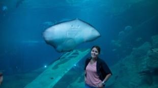 National Marine Aquarium 3