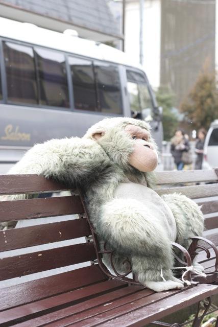 キッチンスタジオ◆横浜ミサリングファクトリー-猿