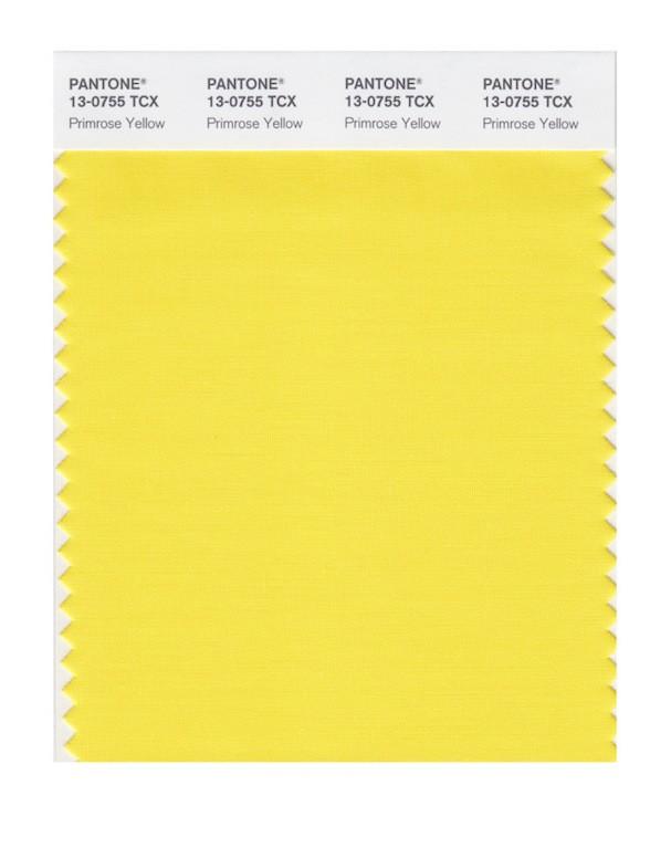Primrose Yellow (Foto: Reprodução)