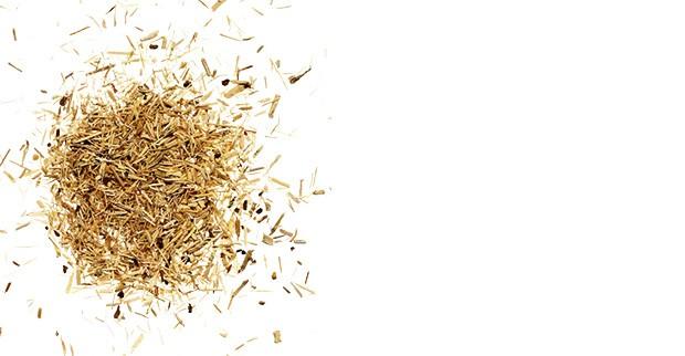 Beleza;Nutrição;Chá;Poção mágica;Ginseng (Foto: Thinkstock)