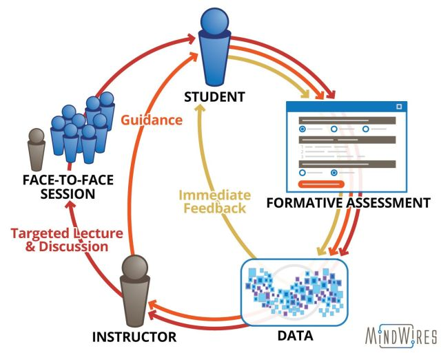 Formative Feedback Loops UCD