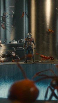 61 Ant Man Apple Iphone 5 640x1136 Wallpapers Mobile Abyss