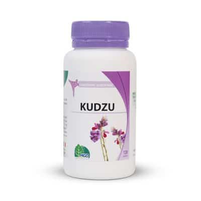 Kudzu