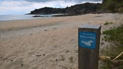 The start of Te Ara Hura walk on Waiheke