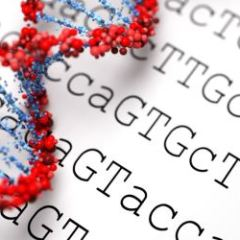 27915588 - dna background