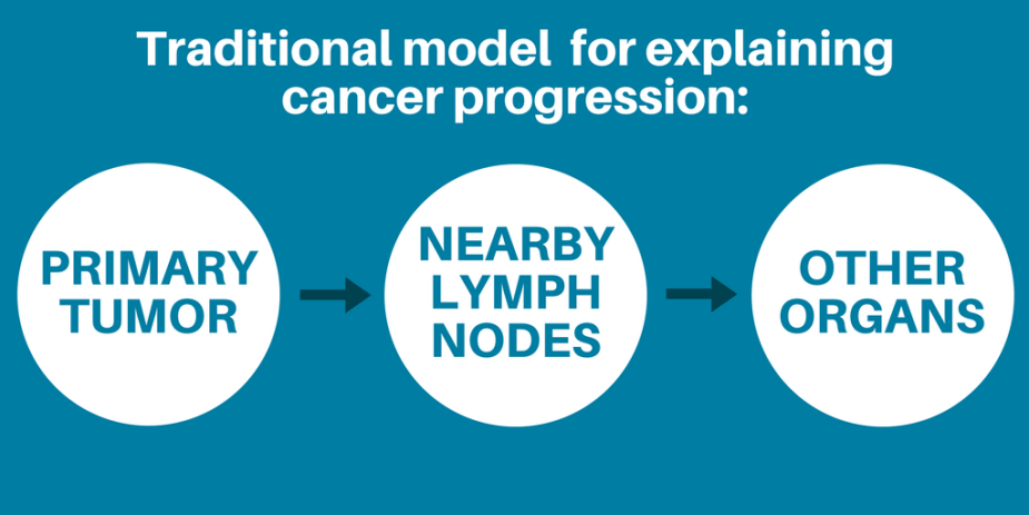 Lymph node graphic 1