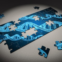 Mgh Study Suggests Genetic Link In >> Genetics And Genomics Research Archives Mass General Research