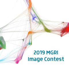 2019 MGRI Image Contest