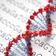 cropped-genomics-largeimage.png