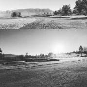 The Foggy Course B/W
