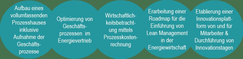 Aufbau eines vollumfassenden Prozesshauses inklusive Aufnahme der Geschäfts-prozesse Optimierung von Geschäfts-prozessen im Energievertrieb Wirtschaftlich-keitsbetracht- ung mittels Prozesskosten-rechnung Erarbeitung einer Roadmap für die Einführung von Lean Management in der Energiewirtschaft Etablierung einer Innovationsplatt-form von und für Mitarbeiter & Durchführung von Innovationstagen