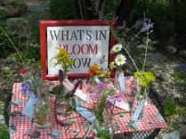 Closeups of what was in bloom at the September 28 Open House at Simpson Gardens.