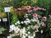 Pollinator Garden at Glencarlyn. Photo © Judy Funderburk