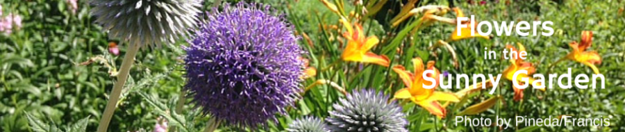 Flowers in the Sunny Garden
