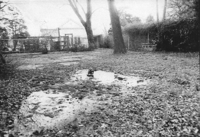 Garden before 1999