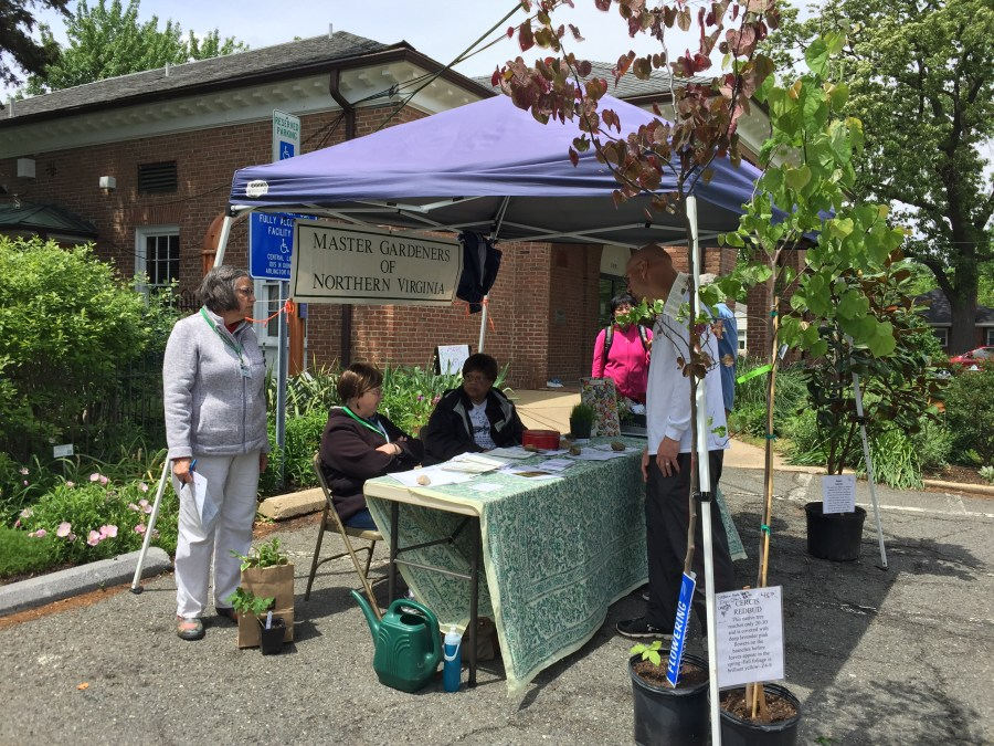 Master Gardeners answer gardening questions