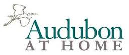 Audubon at home Logo