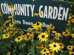 Community Garden sign at Glencarlyn