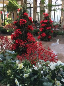 Christmas rose hellebores, winterberry holly, and poinsettia-covered trees in the marble-floored Exhibition Hall.