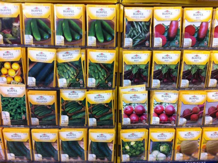 Packets of Vegetable Seeds