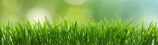 Lawn banner