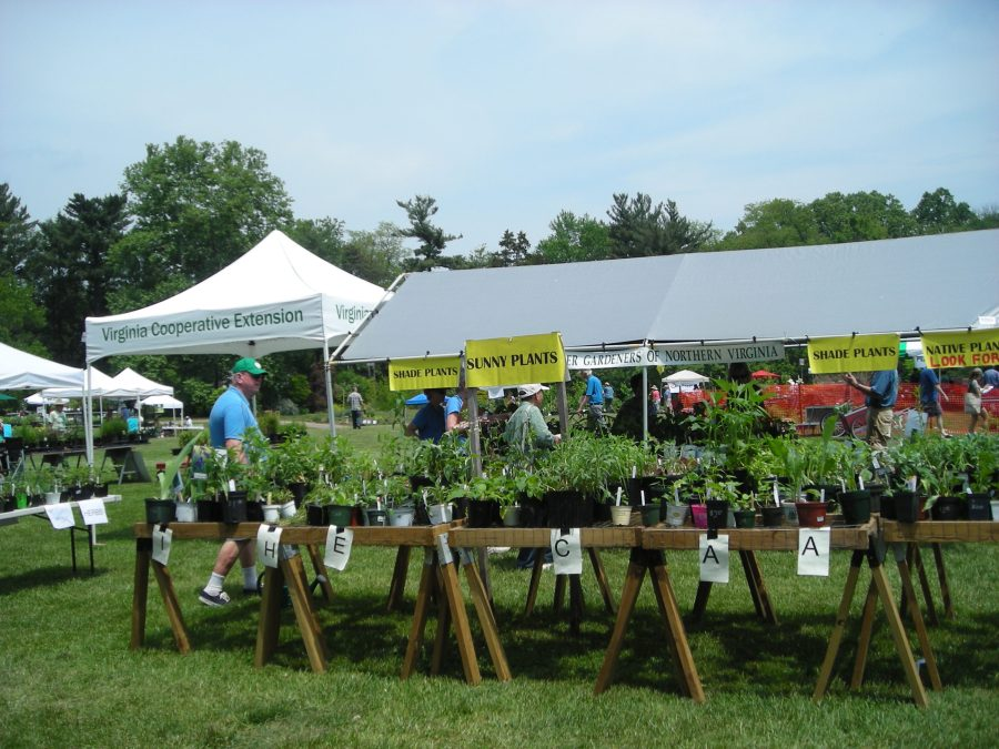 2015 Green Spring Plant Sale MGNV Booth
