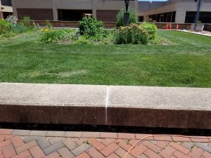 Urban Herb Gardens at Georgetown University Medical Center