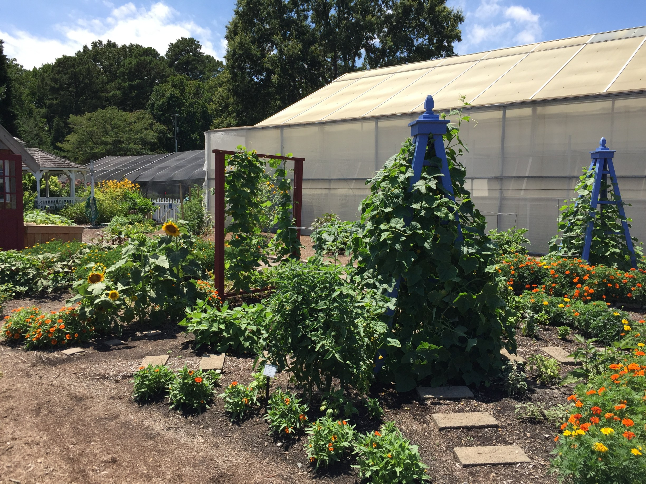 The Kitchen Garden has vegetables interplanted with herbs and flowers. Photo © 2018 Elaine Mills.
